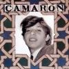 camaron_en_la_venta_de_vargas
