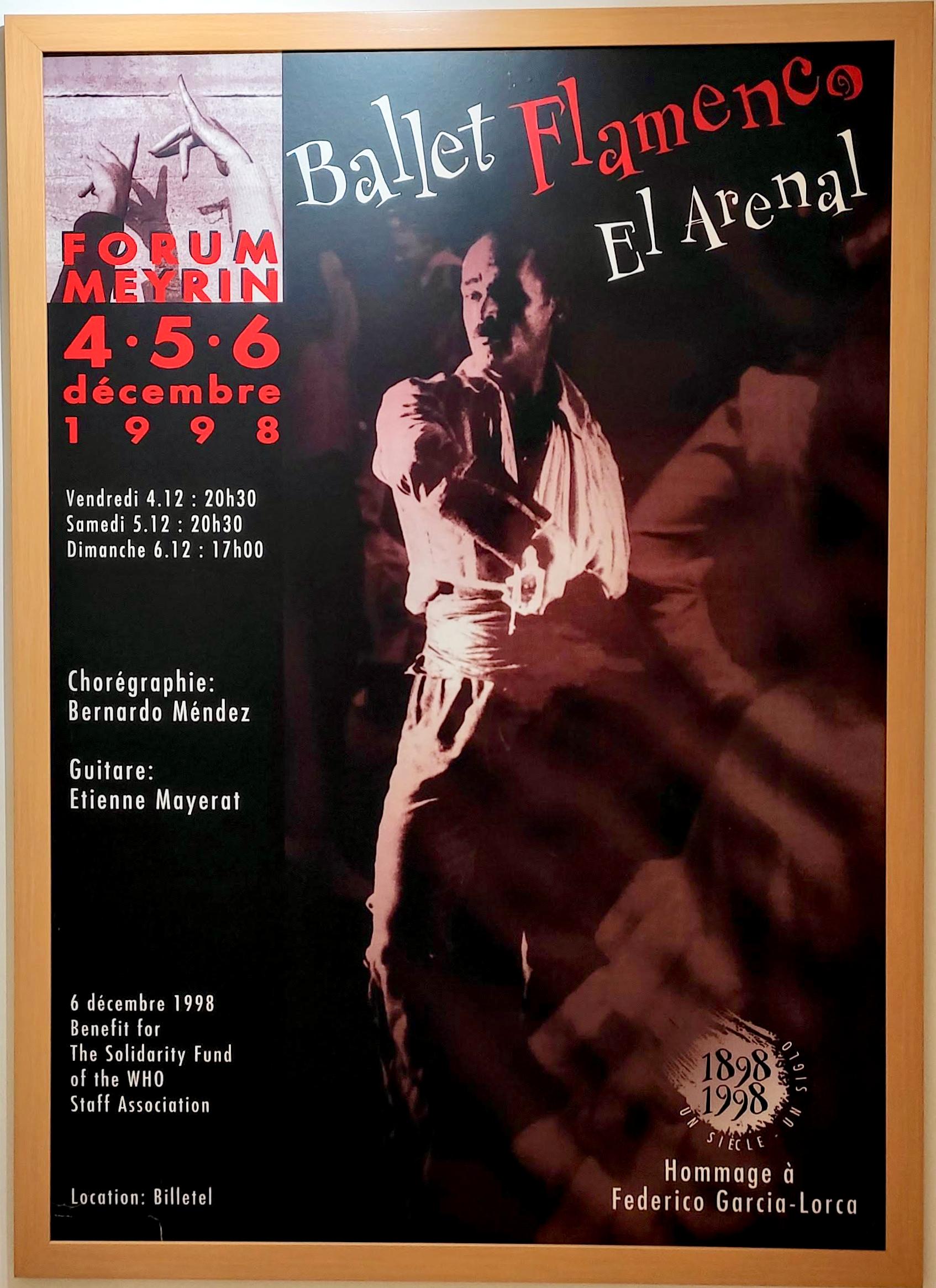 Ballet Flamenco el Arenal